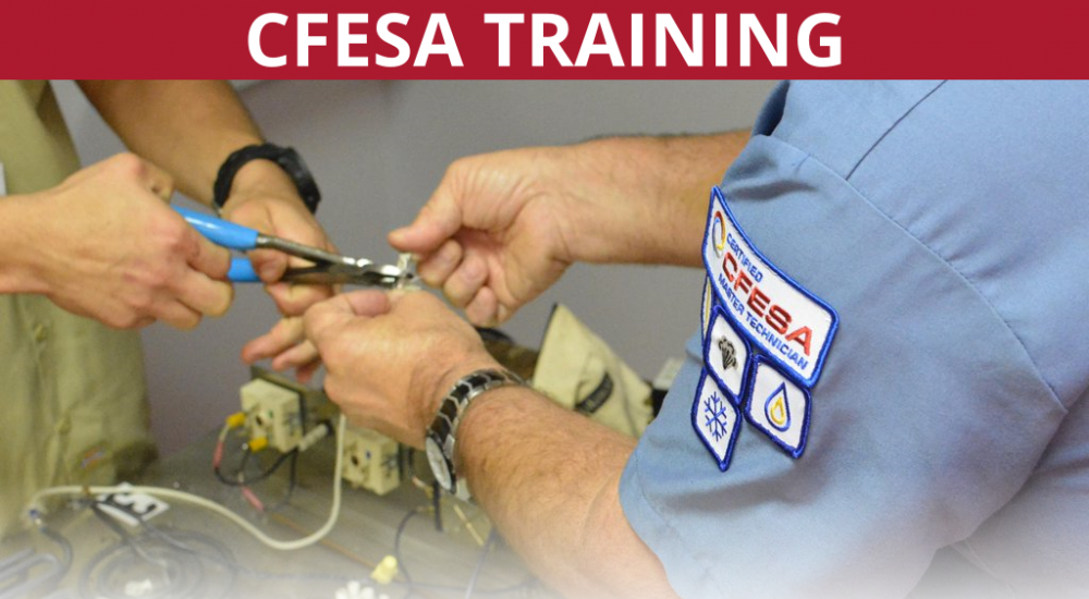 CFESA Training
